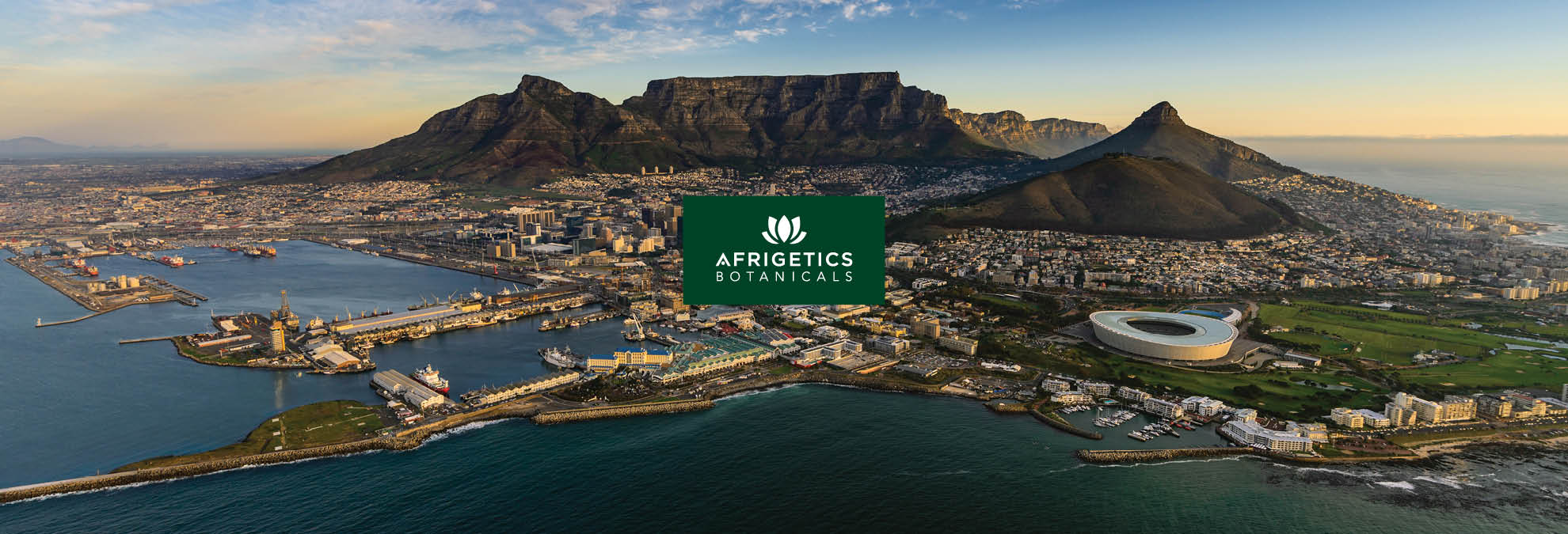 afrigetics-botanicals-about-logistics-cape-town-south-africa-harbour-2