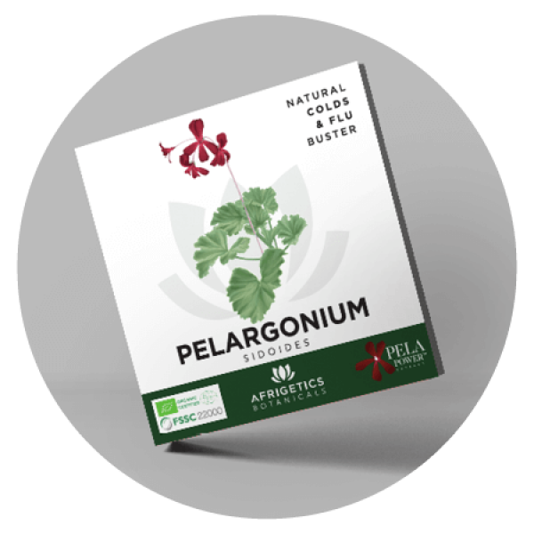 afrigetics-botanicals-homepage-pelargonium-sidoides-brochure