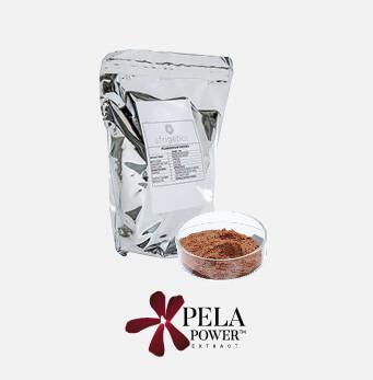 afrigetics-botanicals-pelargonium-sidoides-products-powder-extract-pelapower