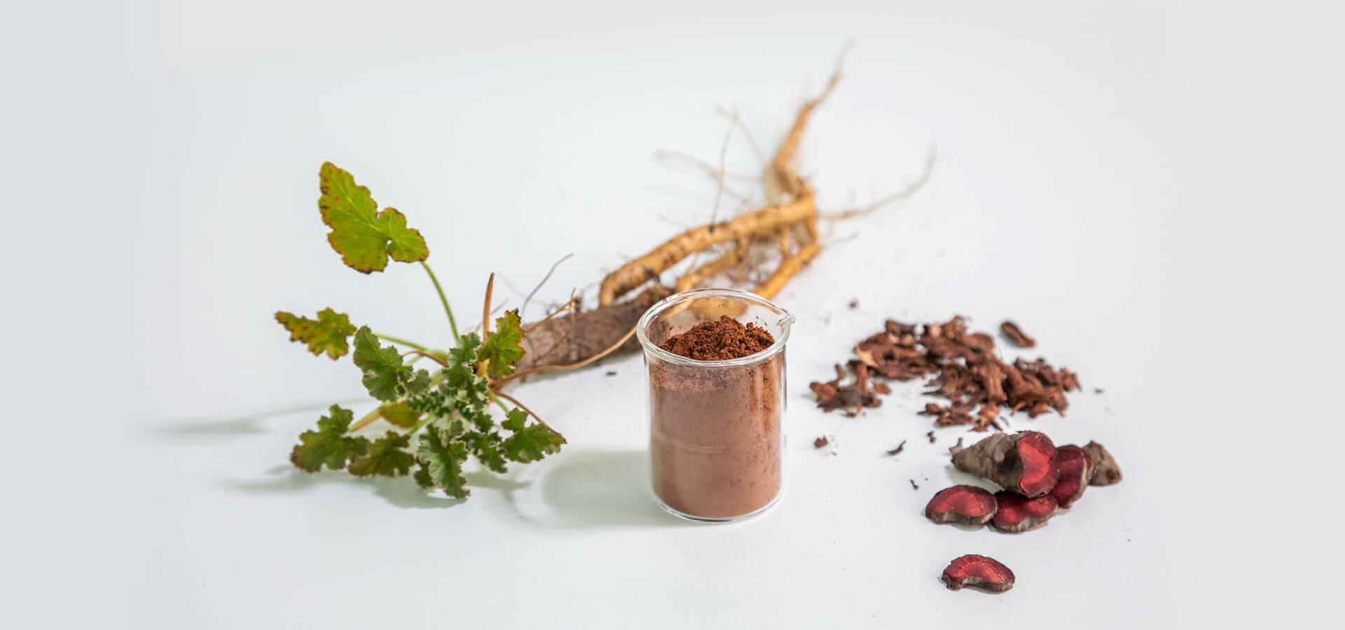 afrigetics-botanicals-banner2